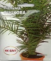 Пальма финиковая комнатная