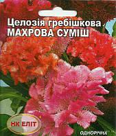 Цветы Целозия гребешковая  Махровая смесь