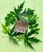 Ним, Neem, 10 капс. (одна пластинка) - природный антибиотик, очищение и разжижение крови, выведение токсинов