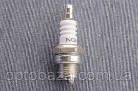 Свеча Oregon тип А для бензопил серии 4500-5200, фото 3