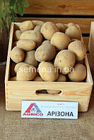 Картофель Аризона  5 кг