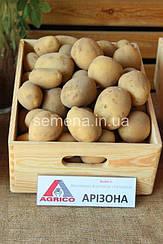 Картофель Аризона  2.5 кг