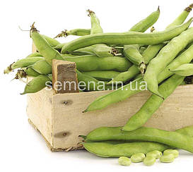 Бобы овощные Дольче  10 г
