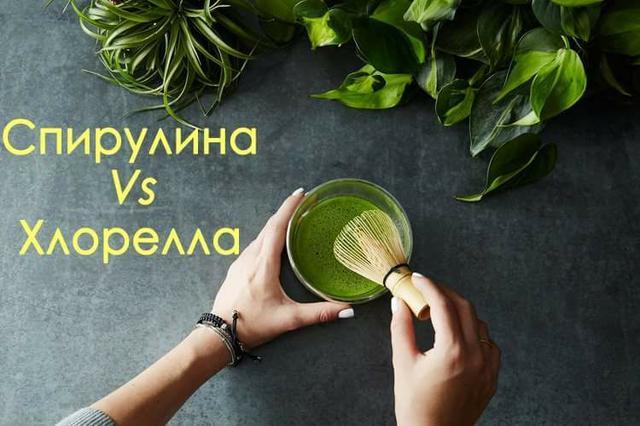 Спирулина vs Хлорелла