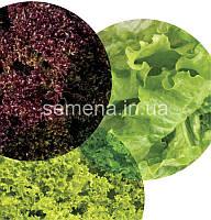 Салатный микс Витаминный набор  30 шт