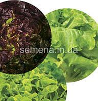 Салатный микс Здоровый завтрак  30 шт