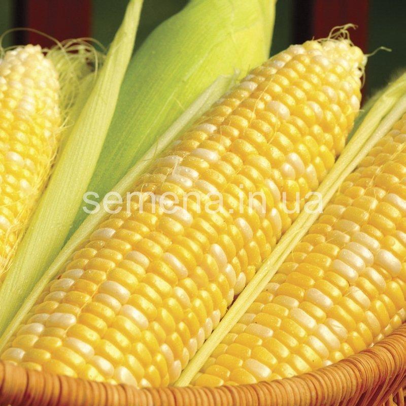 Кукуруза Кукс Делайт F1  1 кг