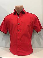 Мужская рубашка с коротким рукавом на трех кнопках