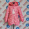 Демисезонная  детская балоневая куртка для девочек GRACE  оптом