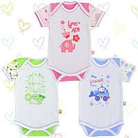 Боди-футболка для новорожденных 3-8мес.Тонкий хлопок-Кулир 13030кукс.В наличии 62,68,74см. Рост