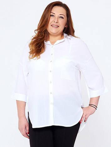 Белая рубашка больших размеров Джасинта, фото 2