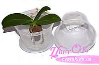 Горшок дренажный без поддона для деток, подростков орхидей, d 11см, фото 1