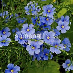 Лен многолетний голубой 0,3 г
