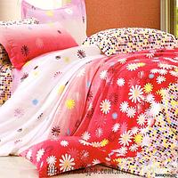 Комплект постельного белья TL 12170 семейный