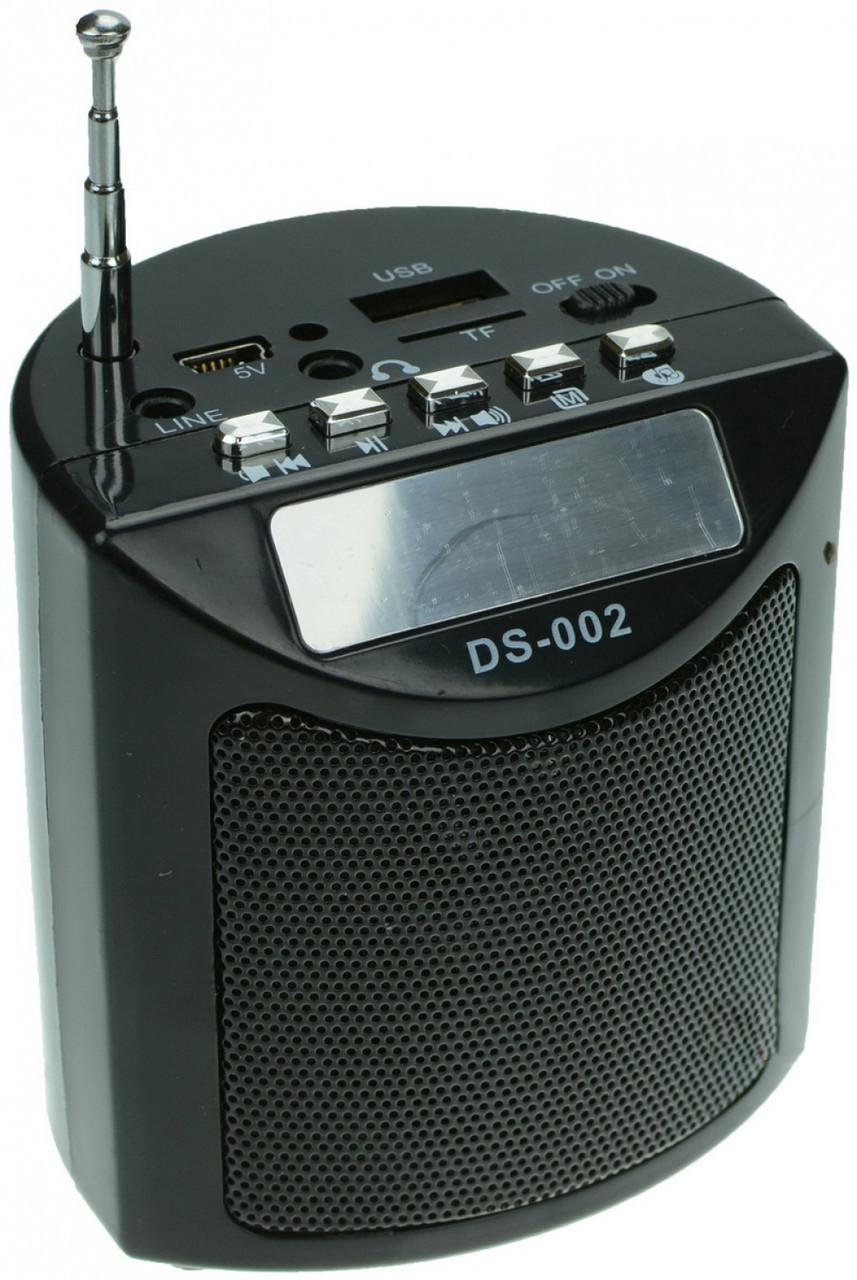 Портативная колонка с радио DS-002