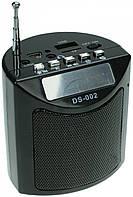 Портативная колонка с радио DS-002, фото 1