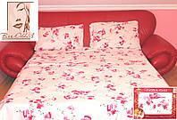 Сакура розовая на белом