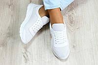 Кроссовки женские летние кожаные белые Ko0033