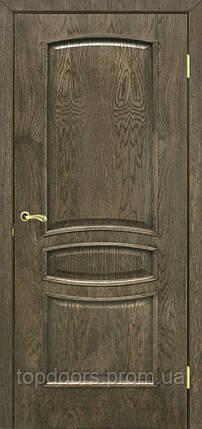 Полотно дверное шпонированое ТМ ОМИС Венеция ПГ, фото 2