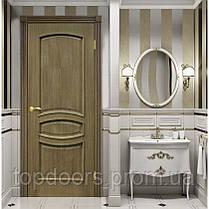 Полотно дверное шпонированое ТМ ОМИС Венеция ПГ, фото 3