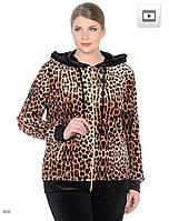 2be58a70ac74 Женский велюровый турецкий костюм EZE, большие размеры 54,56,58,60 купить