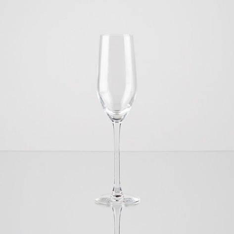 Arc Mineral Набір келихів д/шампанського 160мл-6шт Н2090, фото 2