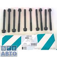 Болти головки блоки Fiat Doblo 1.3MJTD (Payen HBS353)