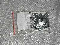 Заклепка 4х10 накладки колодки тормоза ГАЗ 24 (40шт) (пр-во Украина)