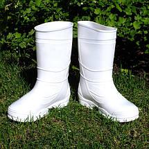 Сапоги резиновые VR женские ПВХ белые, фото 2