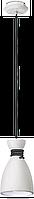 Светильник Подвес Vesta light NAOMI (56021-1)