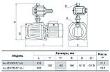 Насосная станция «Насосы Плюс оборудование» AUJEX 750/E1(A), фото 2