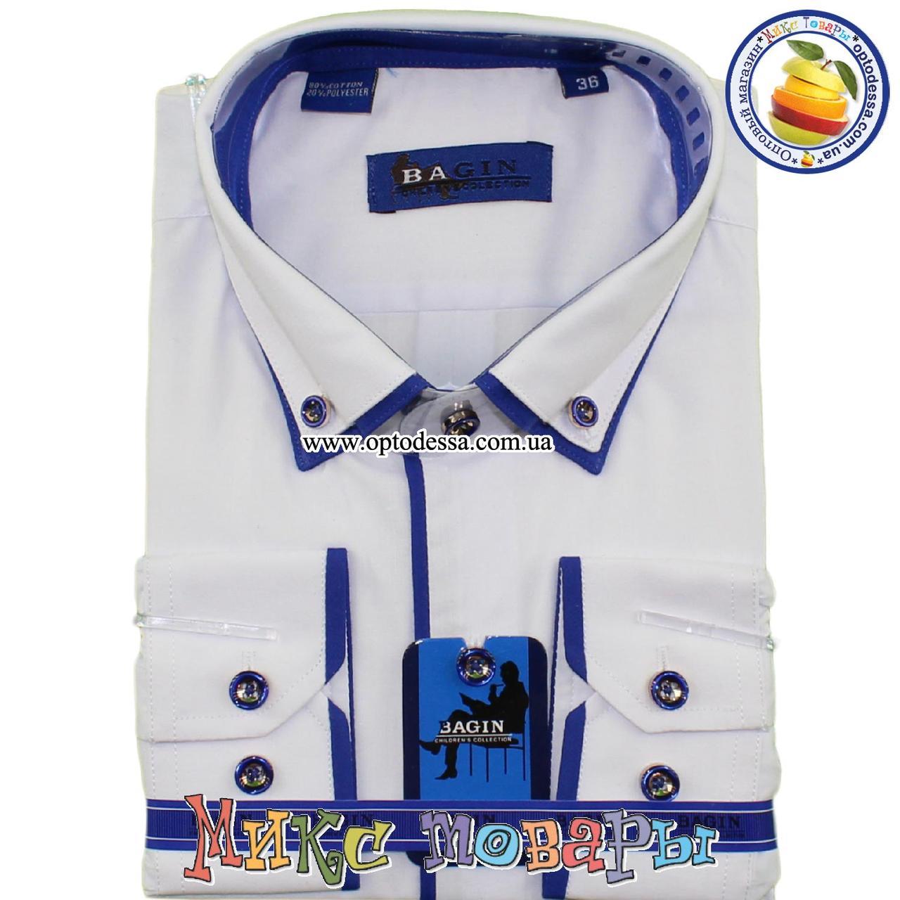 Белая рубашка с синей окантовкой Длинный рукав (Ворот: 28- 36) (vk88-2)
