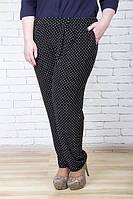 Трикотажные женские черные брюки большого размера  ГРАЦИЯ ГОРОХ ТМ Ирмана 54-64 размеры