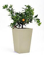 Planter - плетеный вазон  бежевый 23,6 литров Keter