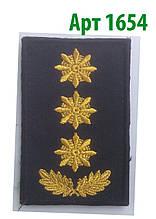 Погон 2017 Полковник Муніципальна поліція