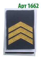 Погон 2017 Сержант Муніципальна поліція