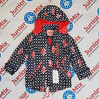 Детская осенняя  балоневая куртка на флисе для девочек GRACE, фото 1