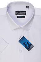 """Мужская рубашка с коротким рукавом """"Castello -white"""""""