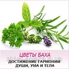 Сводная таблица Цветы Баха