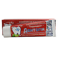 Зубная паста Дентогин Террадент на основе аюрведических трав 100 гр