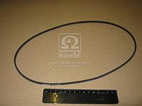 Ремень поликлиновой (Производство ContiTech) 2PJ860