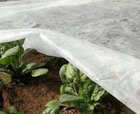 Агроволокно: достижения современной науки на службе у дачника