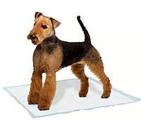 Пеленки для собак GENICO MEDIUM 10 шт