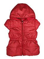 Жилетка для девочки тм Бэмби JL16 р.80 красный