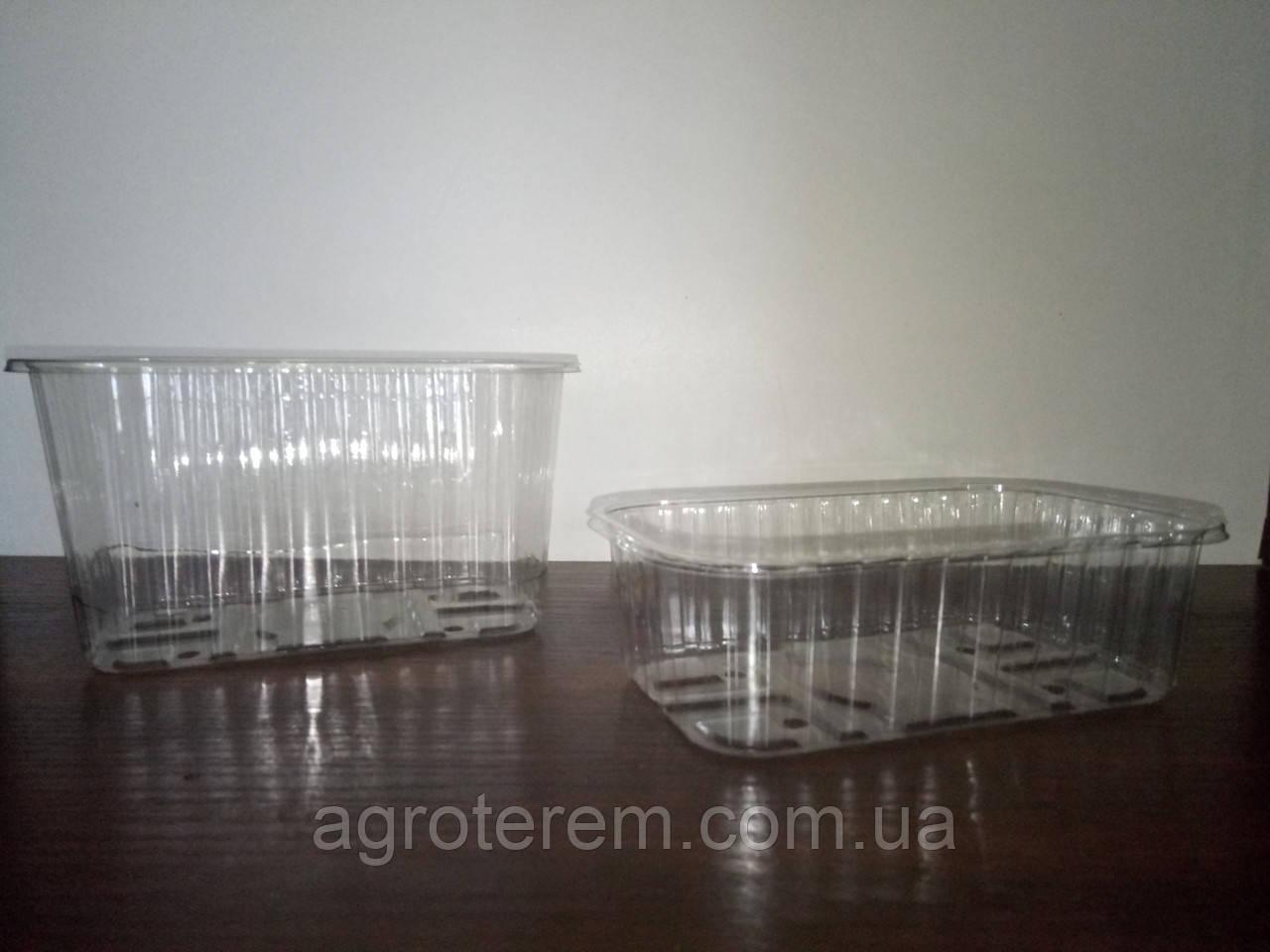 Пинетки для клубники (ягод) 1000г - Agroterem в Одессе