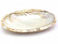 Блюдо ракушка из корицы со смолой и перламутра белое (23,5х15,5х3 см) ( 29923)