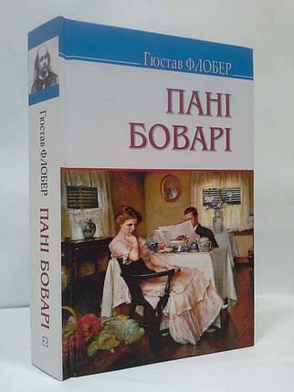 Знання Скарби (міні) Флобер Пані Боварі побут провінції Роман (ТВ), фото 2