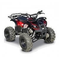 Квадроцикл Spark LZ110-4 (№15065ТР)