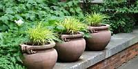 Садовые вазы, горшки и вазоны.