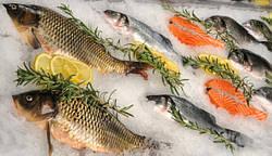 Незаконна риба: наслідки покупки.